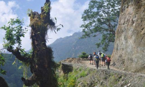 Zdjęcie NEPAL / Annapurna Range / na trasie / W drodze do Ulleri