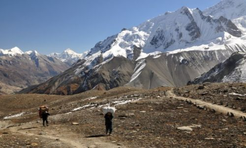 Zdjecie NEPAL / Annapurna Round Trek / okolice Tilicho Base Camp / tragarze