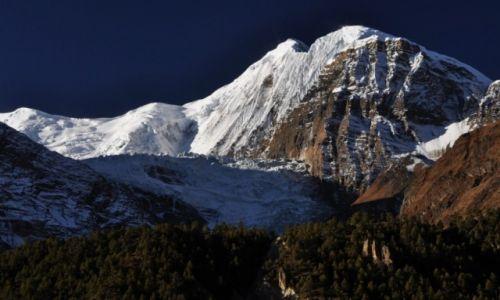Zdjecie NEPAL / Annapurna Round Trek / okolice Manangu / Gangapurna 7455m