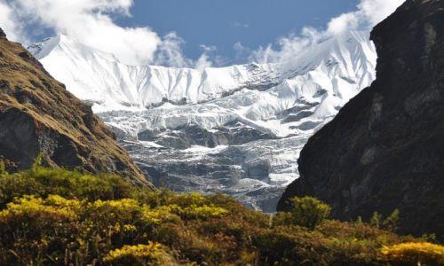 Zdjęcie NEPAL / Annapurna Range / M.B.C. / W okolicy M.B.C.