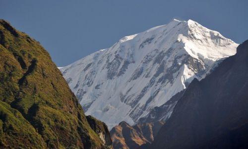 Zdjęcie NEPAL / Annapurna Range / Na szlaku / Annapurna III