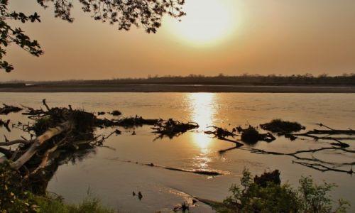 Zdjęcie NEPAL / - / Chitwan National Park / W zachodzącym słońcu...