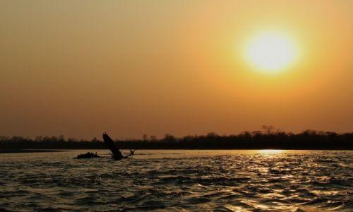 Zdjęcie NEPAL / - / Chitwan National Park / Zachód..