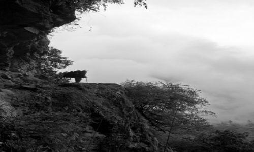 Zdjecie NEPAL / annapurna Conservation Area / annapurna circuit / na półce