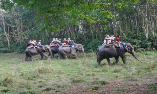 Zdjęcie NEPAL / Zbocza pasma himalajskiego Siwalik / Royal Chitwan National Park / Safari na słoniach