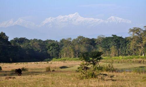 Zdjęcie NEPAL / Terai / Sauraha / Manaslu z PN Chitwan
