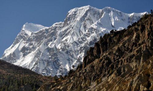 Zdjecie NEPAL / Annapurna / okolice Humde / Annapurna III