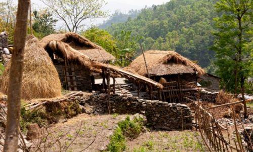 Zdjęcie NEPAL / Annapurna / Nayapul /  na szlaku
