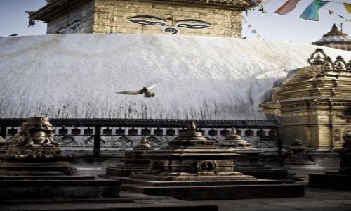 Zdjecie NEPAL / Katmandu / Swajambhunath / Stupa o świcie