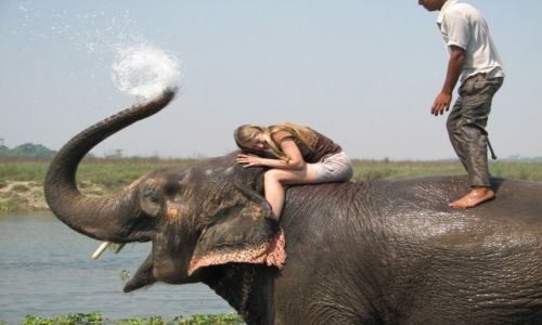 Zdjęcie NEPAL / Chitwan National Park / Jagatpur / Radość