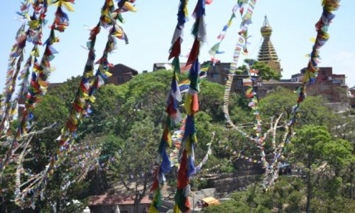 Zdjęcie NEPAL / katmandu / katmandu / nepal