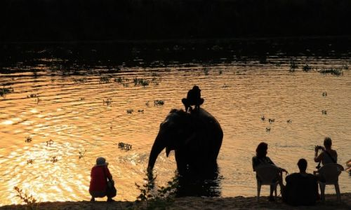 Zdjęcie NEPAL / Chitwan / Chitwan / Kapiel