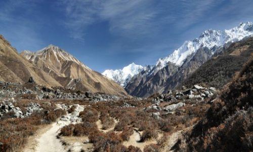 NEPAL / Langtang / okolice Kyanjin Gompa / w dolinie Langtang