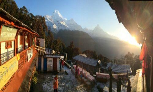 Zdjecie NEPAL / Annapurna / Tadapani / Machapuchare