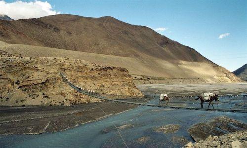 Zdjecie NEPAL / Annapurna / Kagbeni / Most na rzece