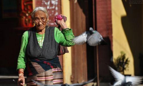 NEPAL / Dolina Kathmandu / Stupa Bouddanath / efekt gołebia