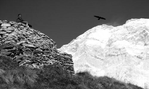Zdjęcie NEPAL / Masyw Annapurny / Sanktuarium Annapurny / Harmonia