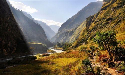 Zdjęcie NEPAL / Manaslu / gdzieś na treku / na szlaku