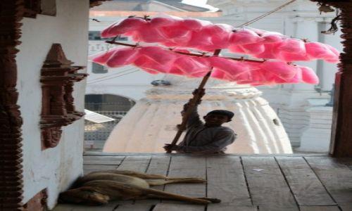 Zdjecie NEPAL / -Dolina Kathmandu / Kathmandu / Dzieci Kathmandu