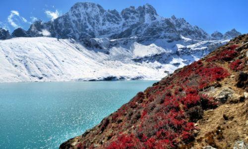 Zdjęcie NEPAL / - / Gokyo Ri / Nad jeziorem