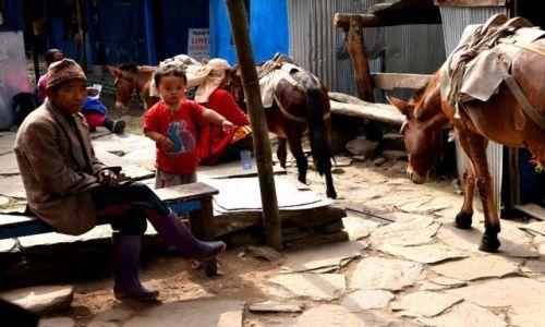 Zdjęcie NEPAL / Centralny Nepal / Okolice Pokhary / Obserwacja