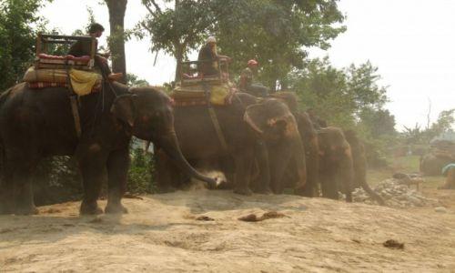 Zdjęcie NEPAL / Nepal / chitwan / postój taksówek