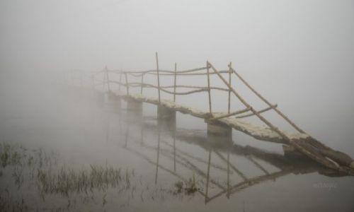 Zdjecie NEPAL / Chitwan NP / Chitwan / Poranne mgły