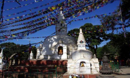 Zdjecie NEPAL / Kathmandu / Swayambhunath / Flagi modlitewne