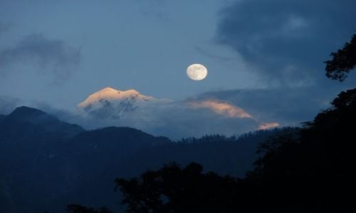 Zdjecie NEPAL / Himalaje / Dharapani / Manaslu w pełni