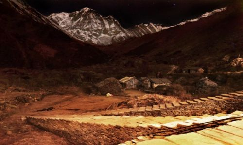 Zdjecie NEPAL / Centralny Nepal / MBC / Machhapuchhare Base Camp