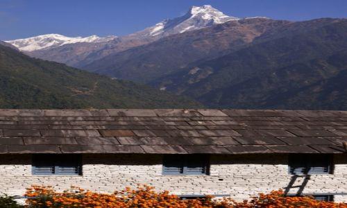 Zdjecie NEPAL / Centralny Nepal  / Annapurna Region / Machhapuchhare