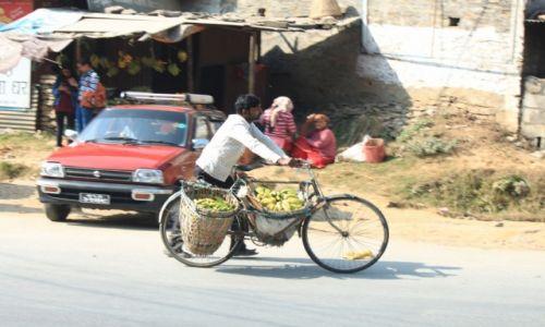 Zdjęcie NEPAL / Kaski / POKHARA / Bananowy rower