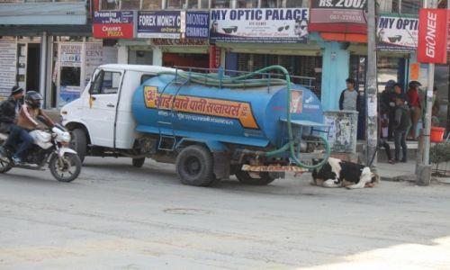 Zdjęcie NEPAL / Kaski / POKHARA / ...w końcu jest przecież święta