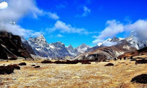 Zdjecie NEPAL / Himalaje / powyżej Dinboche / Koniec jesieni