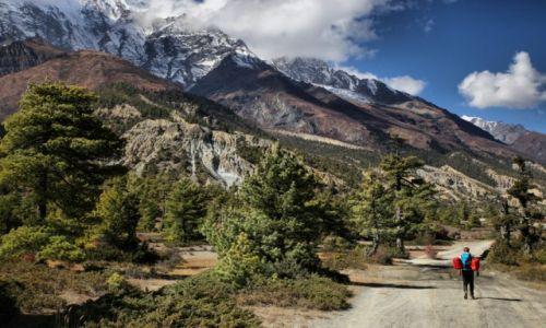 Zdjecie NEPAL / Himalaje / Annapurna / W drodze na przełęcz