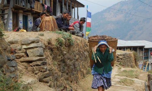 Zdjecie NEPAL / Langtang / ThuloShyaphru / Ona i oni
