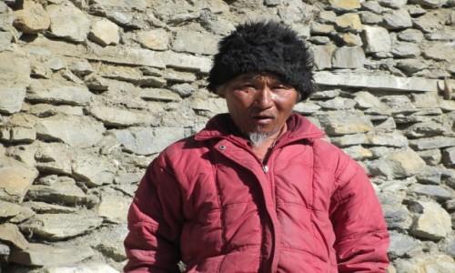 Zdjęcie NEPAL / Annapurna / Letdar pod Thorung Pedi / Mieszkaniec 4000 m npm
