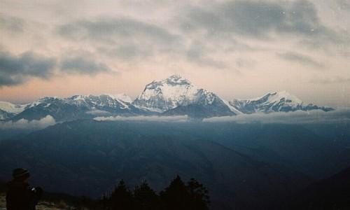 Zdjęcie NEPAL / masyw Annapurny / Poon Hill / masyw Dhaulagiri przed wschodem słońca