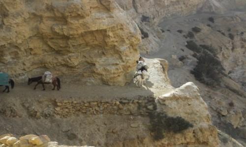 Zdjecie NEPAL / Mustang / Syangboche / Trawers kanionem Khali Gandaki