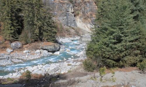 Zdjęcie NEPAL / Nepal Srodkowy Annapurna / ok.Chame / Trekking  Annapurna Circuit