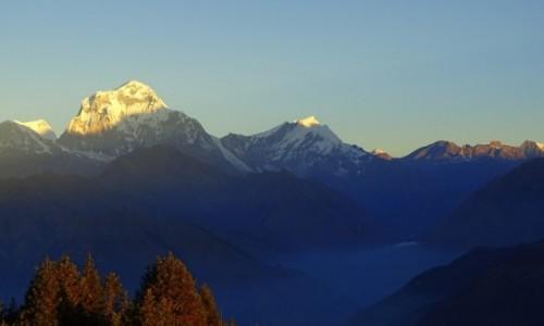 NEPAL / Annapurna Circuit / Poon Hill - widok o świcie na Dhaulagiri / A w dolinie morze mgieł