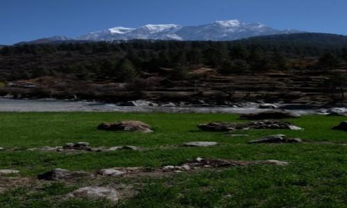 Zdjęcie NEPAL / Tukuche / Tukuche / Nadchodzi wiosna!