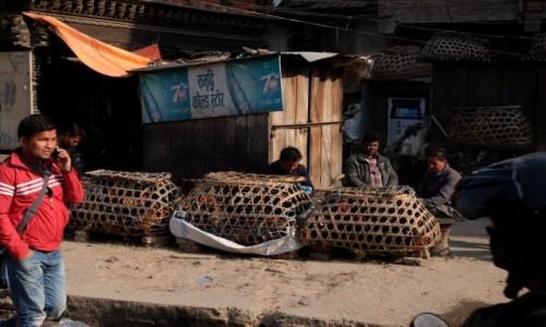 Zdjecie NEPAL / Kathmandu / Patan / Komu kurczaka?
