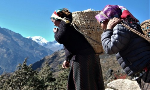 NEPAL / Himalaje, rejon Namcze Bazar / W drodze do Khumjung ponad Namche Bazar / Szerpanki