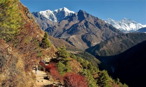 NEPAL / Himalaje, rejon Namcze Bazar / Okolice Khyangjuma / U styku Dudh Koshi Nadi i Imja Khola