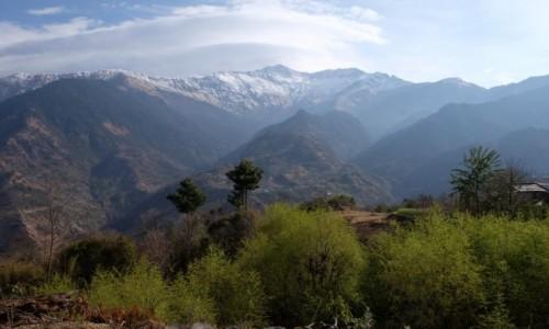 Zdjecie NEPAL / Annapurna Conservation Area / Gorepani / Na szlaku z Shikha do Gorepani