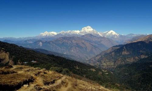 NEPAL / Annapurna Circuit / w drodze do Tadapani / Nagroda :)