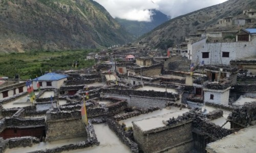 Zdjecie NEPAL / Annapurna / Marpha / Marpha