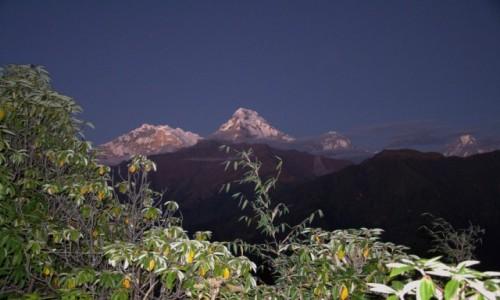 Zdjecie NEPAL / Annapurna / ABC / HIMALAJE