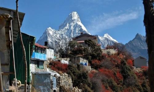 Zdjecie NEPAL / Himalaje, rejon Namcze Bazar / osada Mongla / Blaszaki w raju